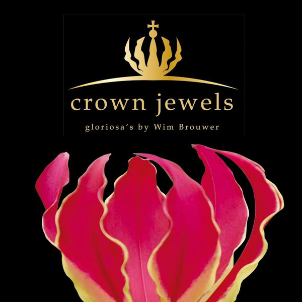 Crown Jewels Gloriosa